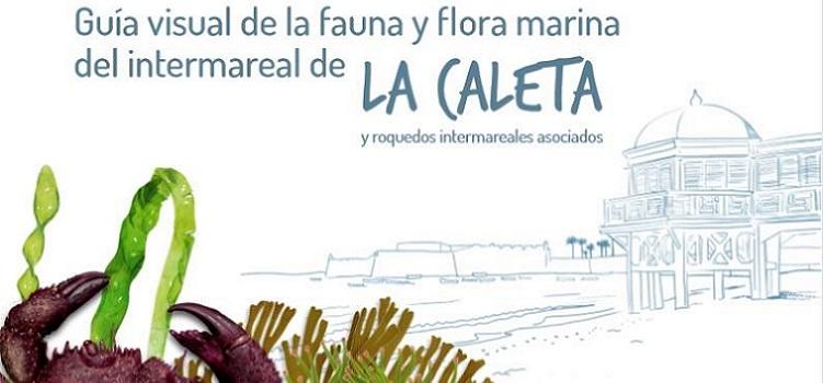 Ampliación de la Guía visual de la Fauna y Flora de La Caleta