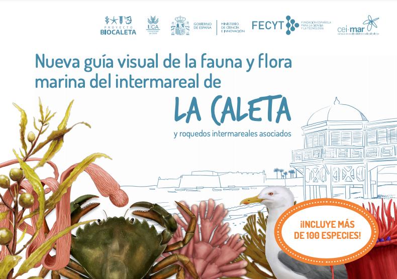 Nueva Guía visual de la Fauna y Flora de La Caleta